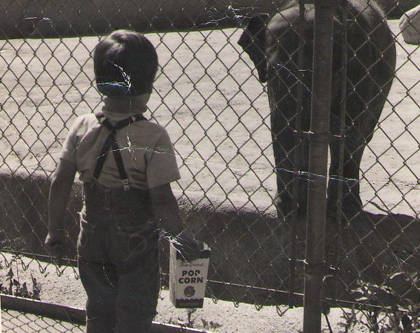 Michael at San Diego Zoo